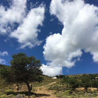 Gökçeada: Gerçek Bir Doğa Harikası
