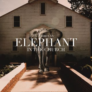 There's an Elephant in the Church