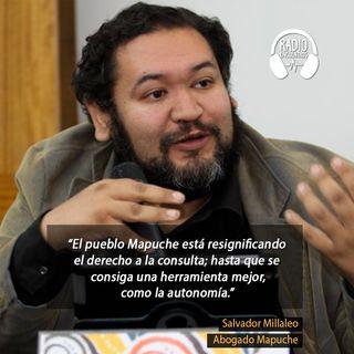 Consulta Previa: Alcances y retos en Chile - Entrevista a Salvador Millaleo