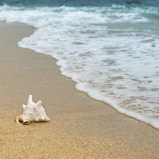 Beach Visualization: Exploring the Senses with Gratitude (July 22, 2020)