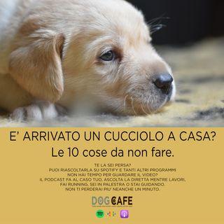 #016 - E' arrivato un cucciolo a casa? Cosa fare e cosa non fare.