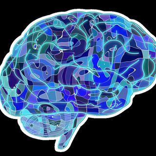 132- Neuroscienze: cosa possono dirci sulla crescita personale?
