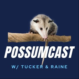 Tucker, Raine....and their possums