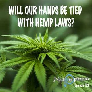 "Episode 173 ""Will Our Hands Be Tied With Hemp Laws?"""