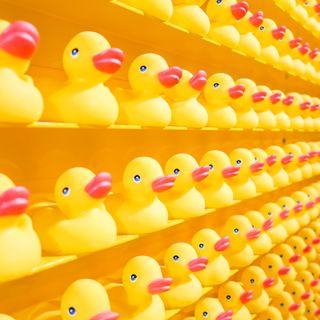 313. La méthode du canard en plastique