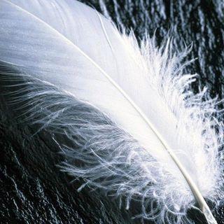 ¿Cómo podemos interpretar los mensajes que nos envían los ángeles?