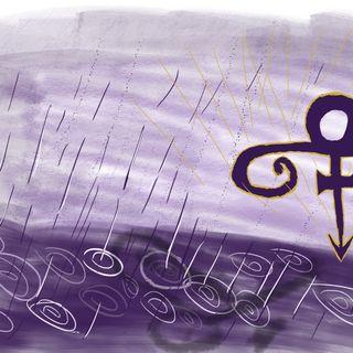 "Episode 25: ""Purple Reign"""