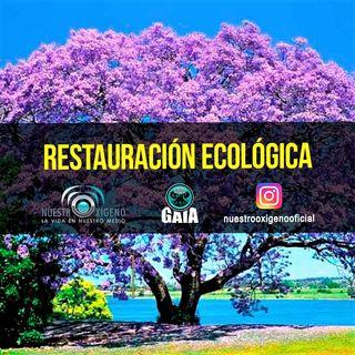 NUESTRO OXÍGENO Restauración ecológica - Rodrigo Inagan