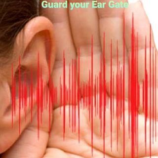 Guard Your EAR GATES
