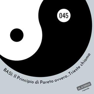 045 BASI: Principio di Pareto 80/20