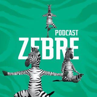 Ep. 2 Amori e altri disastri con Fede e Bea - Zebre Podcast