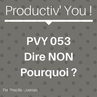 PVY 053 DIRE NON - POURQUOI ?