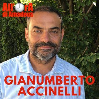 Gianumberto Accinelli - Insetti, che passione!
