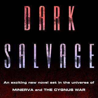 Dark Salvage (Chapter 1)