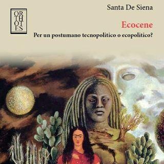 """Santa De Siena """"Ecocene"""""""