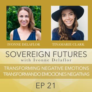 021 - Transforming Negative Emotions | Transformando Emociones Negativas