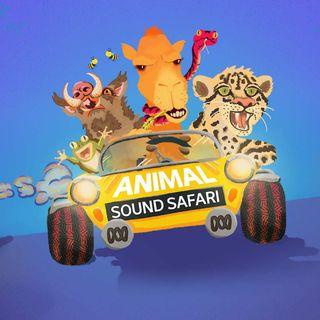 Carl introduces you to Animal Sound Safari