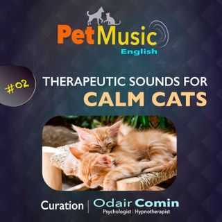 #02 Therapeutic Sounds for Calm Cats | PetMusic