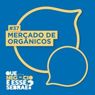 #37: Saiba como agregar mais valor à produção de orgânicos