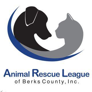 The Animal Rescue League of Berks County - Doggie Dash