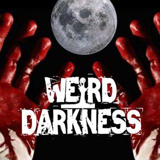 """""""HOMICIDAL SLEEPWALKING"""" and 4 More Terrifying True Stories!"""