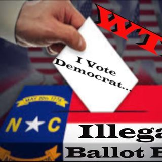 Democrats Vote To Let Illegal Aliens Vote! - - SJG Perspective