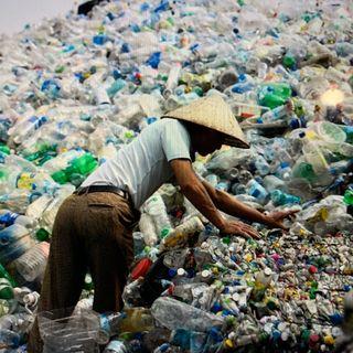 Digital Project Assignment, Plastic Water Bottles - Justin Messerman