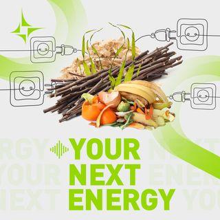 Quale futuro per l'energia prodotta dalle biomasse