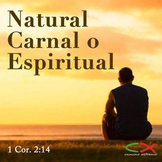 Oración 19 de marzo (Natural, Carnal o Espiritual)