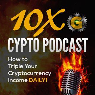 Bitcoin Bear Market Blues... How To Survive a Bitcoin Bear Market