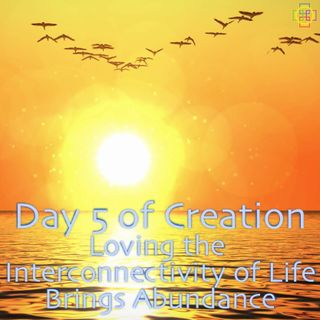 Day 5 of Creation's Deeper Meaning: Loving the Interconnectivity of Life Brings Abundance