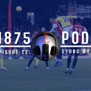 1875 Podcast – Season 2, Episode 22-  Stung by the bees