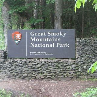 Hiking the Great Smoky Mountains