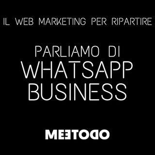 WhatsApp Business è utile per la tua azienda? Quali sono i limiti di utilizzo?