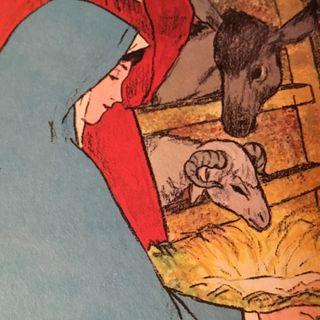 Episode 12 - Washington's Ark Washtub Journey - Man 0re Manna When Salvation Comes