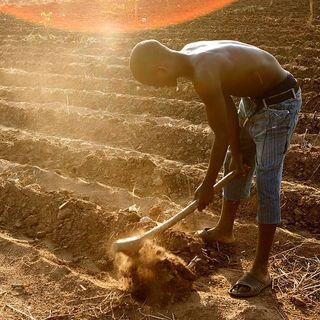 Yebo! L'Africa è in onda - I numeri del cambiamento climatico