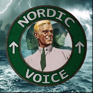 Nordic Voice #7: Street action and movie review