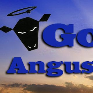 Gary Godley - Extended Interview with an Angus Producer : Episode #395
