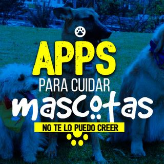 Apps para cuidar mascotas