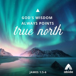 In Need of Wisdom