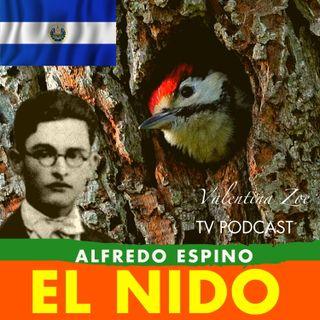 EL NIDO Alfredo Espino🐦🌲 | El Nido Poema de Alfredo Espino🌄 | Poemas de Alfredo Espino Valentina