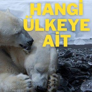 Kuzey Kutbu Hakkında İlginç Bilgiler