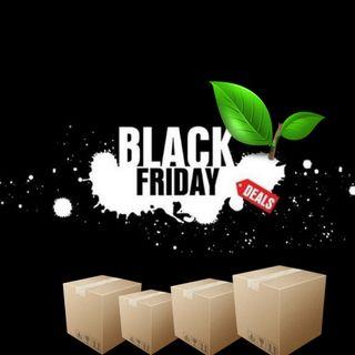 I postumi del Black Friday