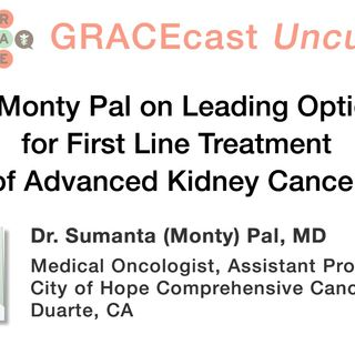 Dr. Monty Pal on Leading Options for First Line Treatment of Advanced Kidney Cancer