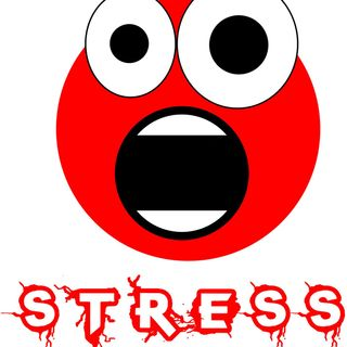 Beliefs, Expectations and Perceptions Create Stress
