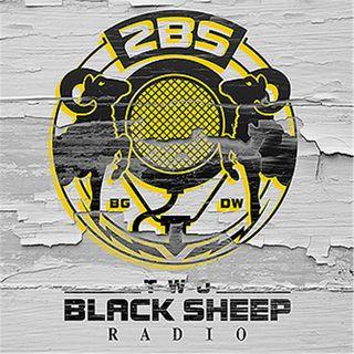 2BS Radio Network