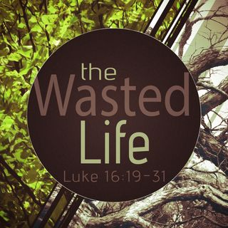 The Wasted Life