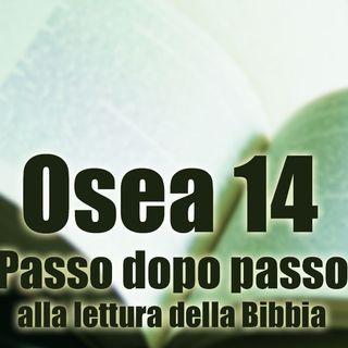 Osea 14