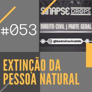 053 | Extinção da Pessoa Natural