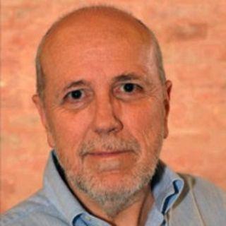 Giovanni Bertin - I sistemi di welfare di fronte al COVID-19